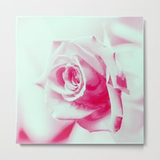 A Rose is a Rose... Metal Print
