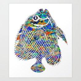 Fish Fishing Fisherman Aquarium Tropical Rainbow Beautiful Fish Art Print
