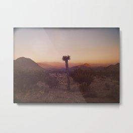 Good Morning Sunshine - Joshua Tree v1 Metal Print