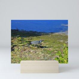 Walk in the Morning Light Mini Art Print
