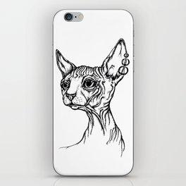 Sphynx cat portrait iPhone Skin