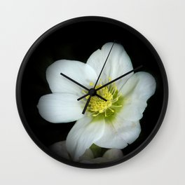 Christmas rose on black Wall Clock