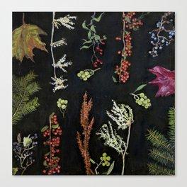 Festivus Botanicus Canvas Print