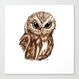 Wise 'Ole Owl Canvas Print