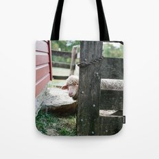 Adorable Sheep Peeking Out From Behind Fence Tote Bag