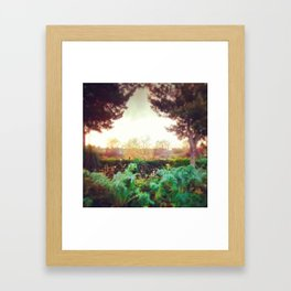 Instagram Summer Garden Irish Landscape Green and Amber Photography Print Framed Art Print
