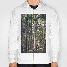 Magic Forest Hoody