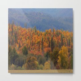 Fall colors huddled together.... Metal Print