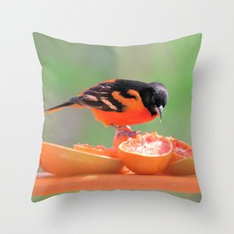Orange Juice for Breakfast (Baltimore Oriole) Throw Pillow
