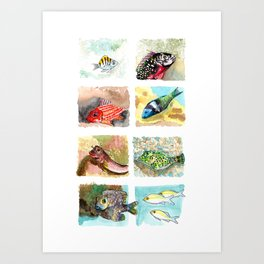 Cirrus/ Coral fish Art Print