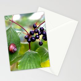 Poison or not : Snail with berries Stationery Cards