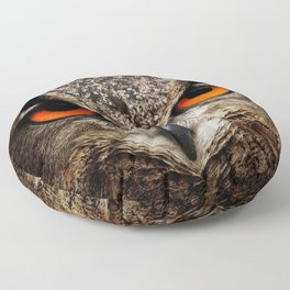 Owl Bird Eyes Eagle Floor Pillow