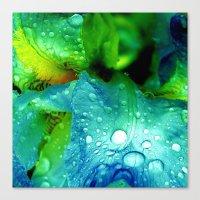splash Canvas Prints featuring Splash by Stephanie Koehl