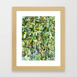 Bamboo forest in South carolina Framed Art Print
