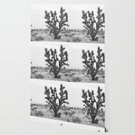 joshua tree bw Wallpaper
