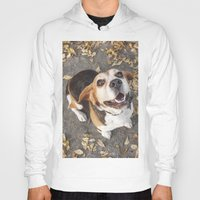beagle Hoodies featuring Beagle by Renata's Photobox