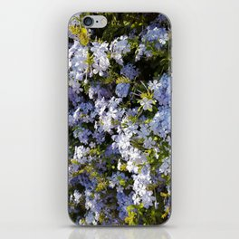 a violet flower in the heart of Athens iPhone Skin