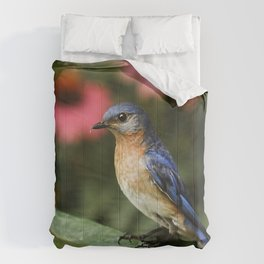 Perched Eastern  BlueBird Comforters