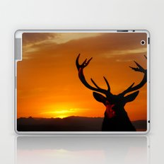 Highland Stag Laptop & iPad Skin