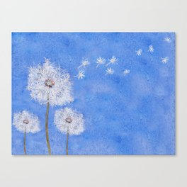 flying dandelion watercolor painting Canvas Print
