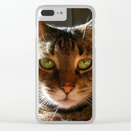 Marley the Mackerel Tabby Cat with Intense Green Eyes Clear iPhone Case