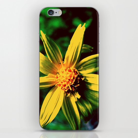 Vintage Yellow Flower iPhone & iPod Skin
