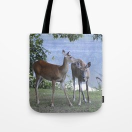 Early Evening Visitors Young Deer -Debra Cortese photo art Tote Bag