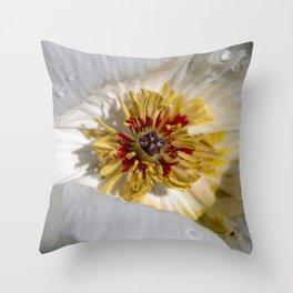 Flower / In The Garden / 1 Throw Pillow