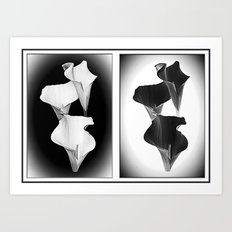 Calla Lillies. Black + White. Art Print
