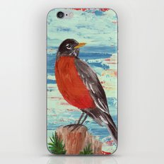 American Robin iPhone & iPod Skin