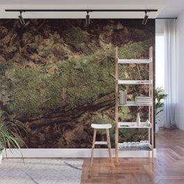 Forest secrets Wall Mural