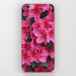 A Shade Of Pink iPhone Skin
