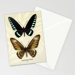 Butterfly16_Trogonoptera Trojana • Pair Stationery Cards