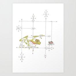 Whimsical Frog & Spider Art Print