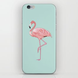Flamingo, Pink Flamingo, Aqua iPhone Skin