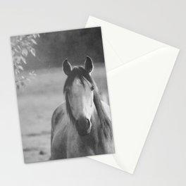 A New Life Stationery Cards