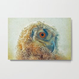 PROF-OWL Metal Print