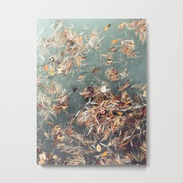 Autumn Caught in the Pond Metal Print