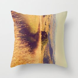 Dream it for your Dreams Throw Pillow