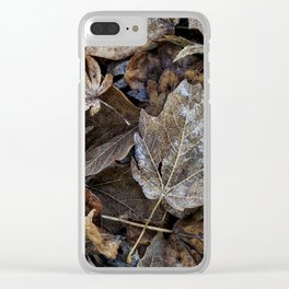 leaves on the ground Clear iPhone Case