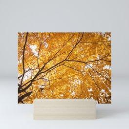 Autumn Skylight Mini Art Print