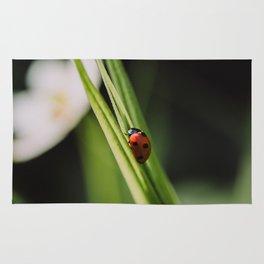 Ladybug on a Leaf Rug