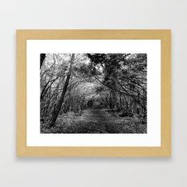 Desolate // Aokigahara  Framed Art Print