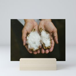Wild Cotton Mini Art Print