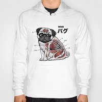 anatomy Hoodies featuring Pug Anatomy by Huebucket