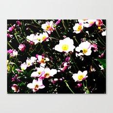 Pink Flowers (Edited)  Canvas Print