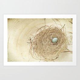 Petit Nest Art Print