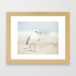 Seagull Beach Photography, Coastal Bird Jersey Shore Art, Blue White Seashore Birds Photo Framed Art Print