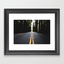 Into The Woods I Go - Nature Photography Framed Art Print