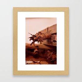 Raw Tabaco Framed Art Print